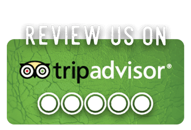 Review Escape Artistry on TripAdvisor